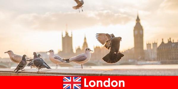 伦敦国际游客的名胜