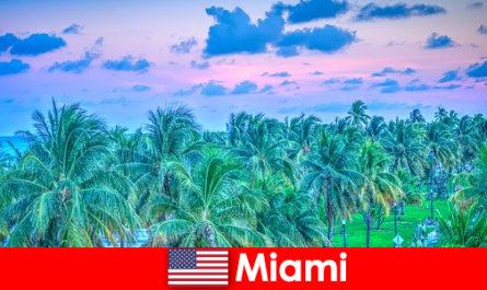 迈阿密令人惊叹的大自然与伟大的热带荒野