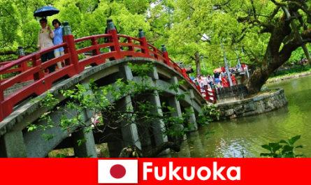 福冈是一个轻松的国际氛围,为移民提供高品质的生活