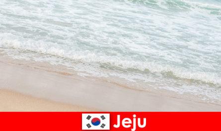 济州拥有细沙和清澈的海水,是家庭在海滩上度假的理想地点
