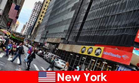 步入式雕塑是纽约的新景点之一