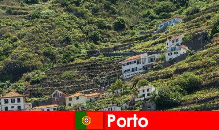 来自世界各地的葡萄酒爱好者的波尔图度假胜地