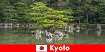 日本花园邀请陌生人在京都放松散步