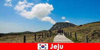 游客徒步穿越韩国济州岛的奇妙自然景观