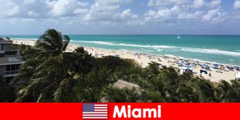 棕榈沙滩波等待长期度假者在帕拉迪斯卡利亚迈阿密美国