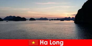 贺龙越南的完美假期,为紧张的外国游客